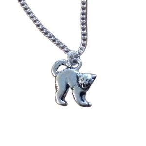 Scaredy cat necklace 1705